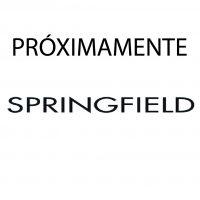 pROXIMAMENTE SPRINGFIELD.jpg